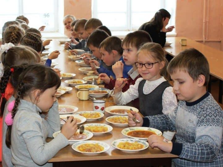 Во Владимирской области разработают стандарт школьного питания